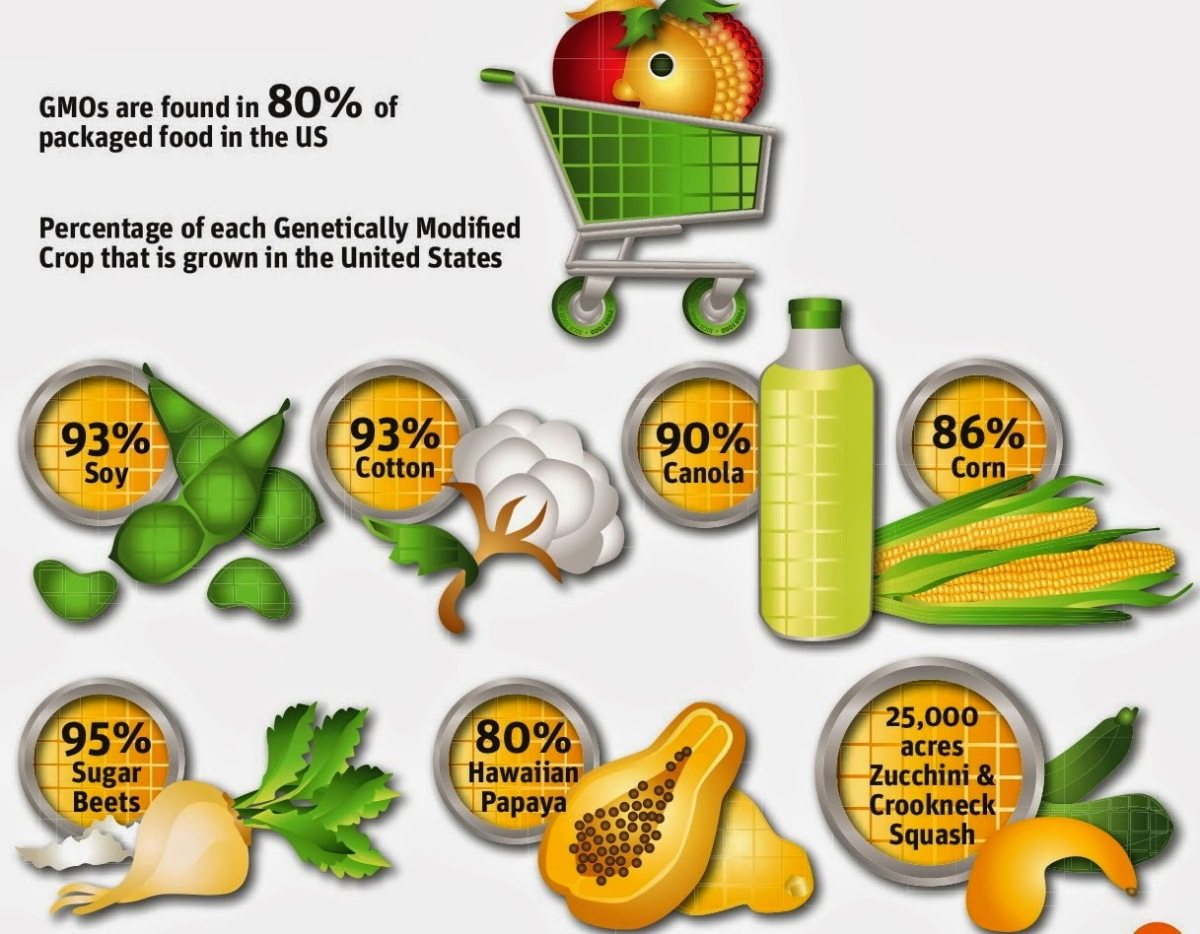 7-gmos-percentages-monsanto1